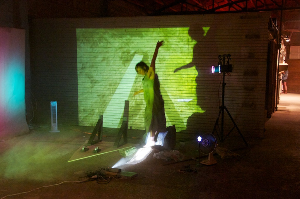Zoe Berg performing at the Land Arts 2012 Exhibition opening.